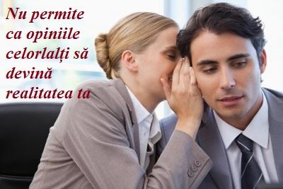 Barfa_mica